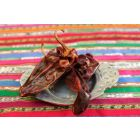 Piment sec guajillo