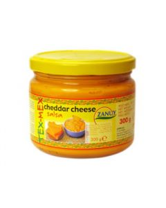 Cheddar cheese salsa- Sauce fromage cheddar
